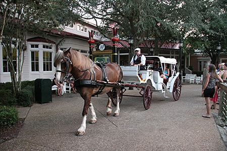 Evening Carriage Ride at Port Orleans Riverside