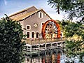 Port Orleans Visitor Photo, submitted by Nora Martinez